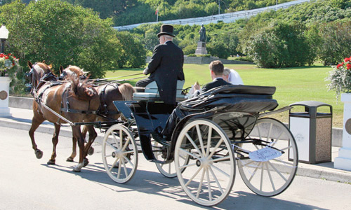 The Carriages of Mackinac Island